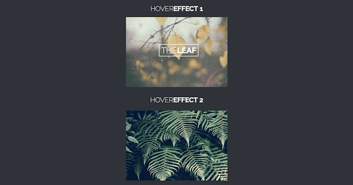 2 Image Hover Effects