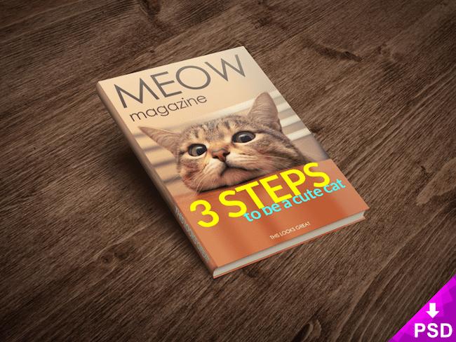 cat_magazine-min