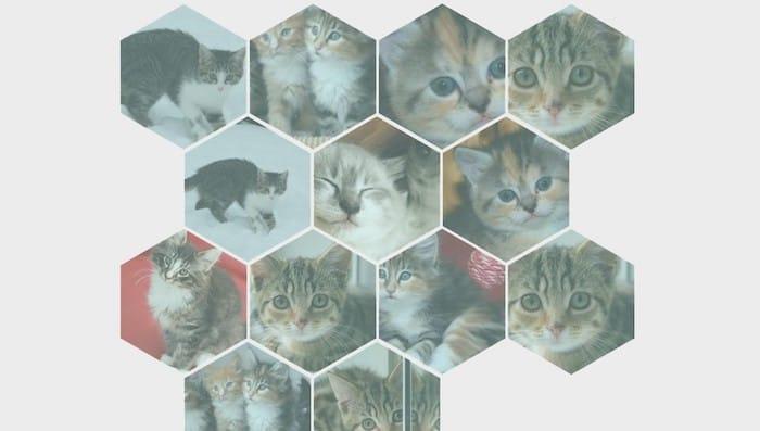 Responsive Hexagonal Grid